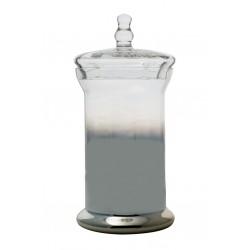Βάζο γυάλινο με καπάκι μερικώς ασημί 31εκ IDEA HOME